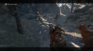 Raiding the Raiders - Chasing Ragnar