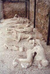 Pompeii Garden of the Fugitives 02