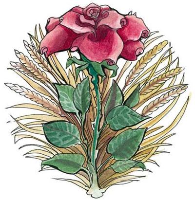 File:Chauntea symbol.jpg