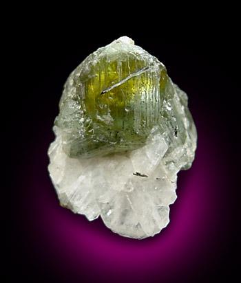 File:Cleiophane-green.jpg