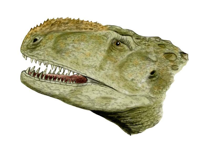 1985 in paleontology | Fossil Wiki | FANDOM powered by Wikia