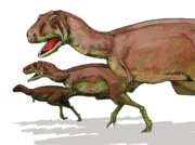 Aucasaurus dinosaur