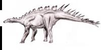 Dacentrurus