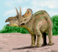Diceratops BW