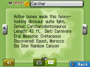 Carchar Fossilary FFC