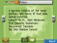 Peloro Fossilary FFC