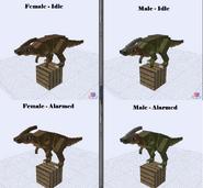 Parasaurolophus (new)