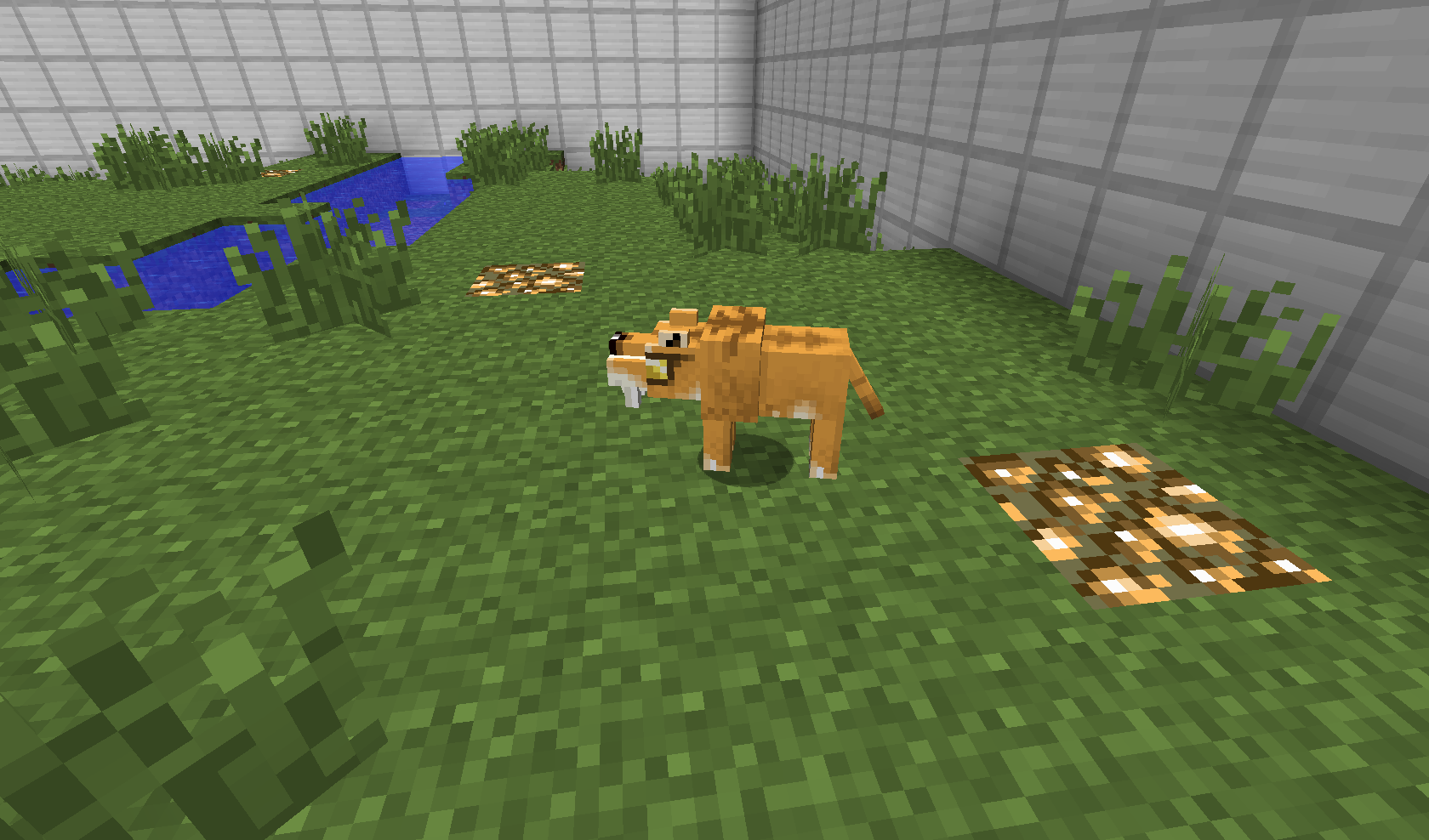 image   baby smilodon png fossils and archeology mod