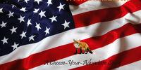 A Fox in America: Choose-Your-Adventure