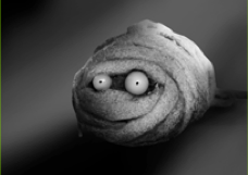 File:Mummy hamster.png