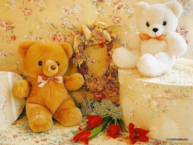 File:Teddy (6).jpg