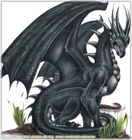 File:Black-dragon.jpg