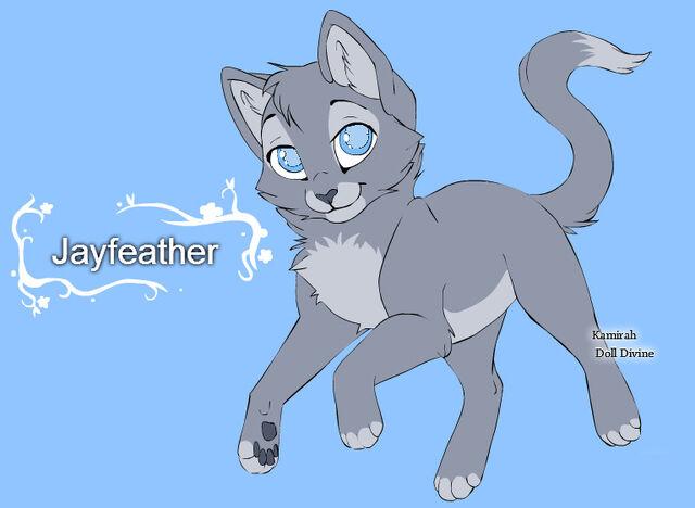 File:Warrior cats character design templates jayfeather by warriorcatscrazy-d5ri30y.jpg