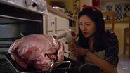 Jessica hair drying the turkey