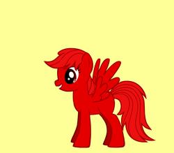 Pony Cassidy