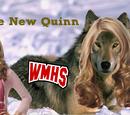 The New Quinn (episode)