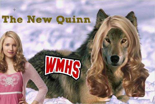 File:Quinn.png