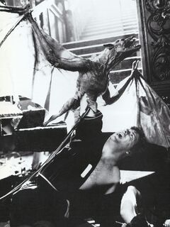 Fright Night 1985 BTS Vampire Bat