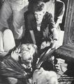Fright Night 1985 Vampire Bat Mark Wilson Randy Cook Roddy McDowall.jpg