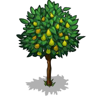 File:Pear Tree Fruit-icon.png