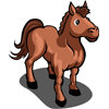 Horse Adult-icon