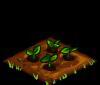 File:Potatoes seedling.png