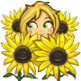 Share Learn About Sunflowers