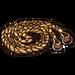 Braided Reins-icon