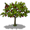 Cherry Tree Fruit-icon