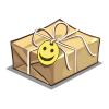 Care Package-icon