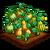 Harvest Gourds-icon