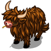 Brown Highland Cow-icon