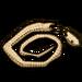 Snake Skin-icon