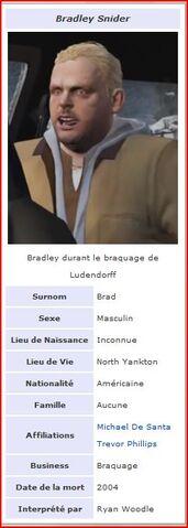Fichier:Brad.JPG