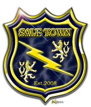 File:ST2008.png