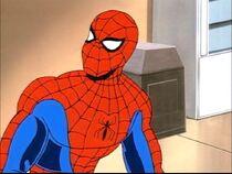 Spider-Mananimatedseries90's