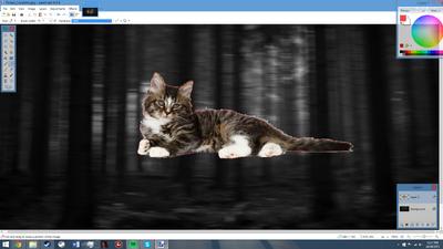 Paintnet screenshot3