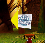 Capecanardosign