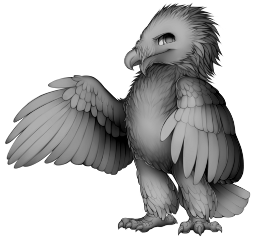 File:Bearded vulture base.png
