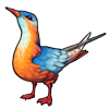 450-orange-chirp
