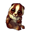 1150-white-face-slow-loris