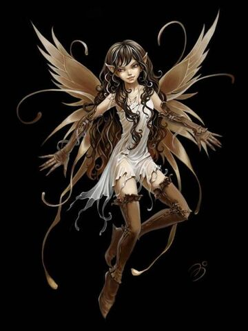 File:62790 brown-fairy-black-cute.jpg