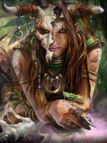 Diablo-3-female-witch-doctor