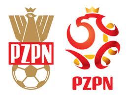 Seleccion de Polonia.jpg