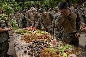 File:Army 4.jpg