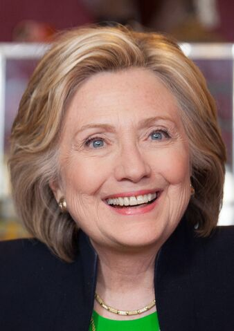 File:HillarySucks.jpg