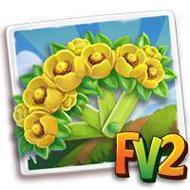Yellow Lily Fan