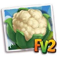 Cauliflower Crop