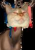 AprilFools2k11 npc 0 carl 24bit cat