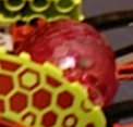 File:Mosquitoid Larva breeding pod.jpg